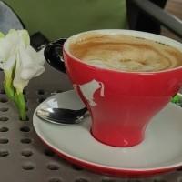 Cafeaua (poezie Marina Costa, proiect Nautilus)
